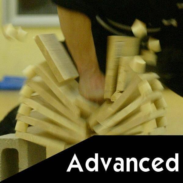 Martial arts explained - Advanced skills