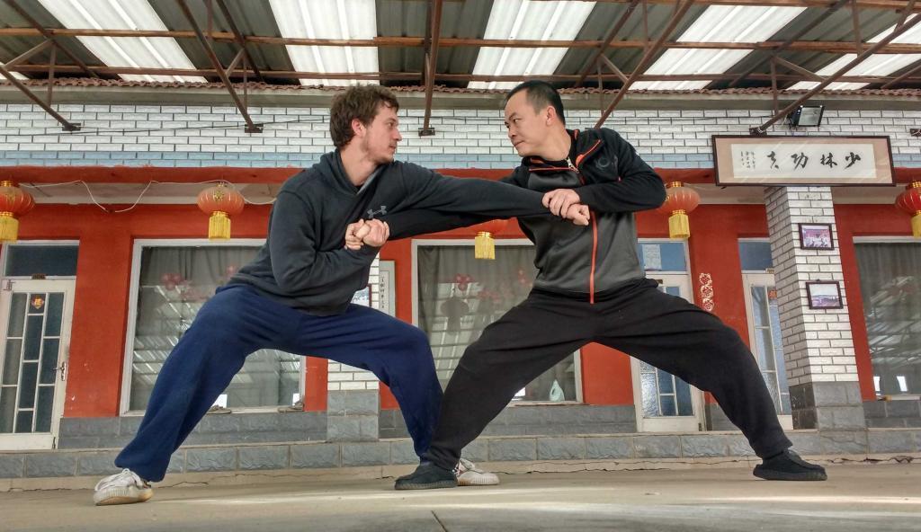 Shaolin Qin na Joint Locks