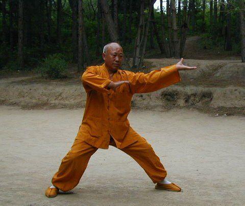 Tai Ji Quan Master
