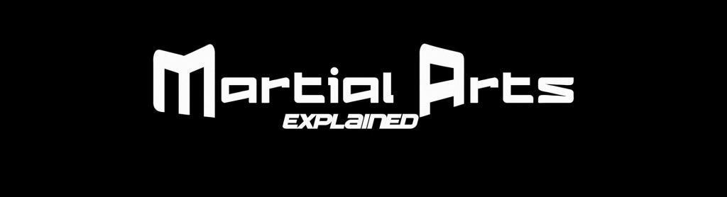 Martial Arts Explained Master Ambassador program