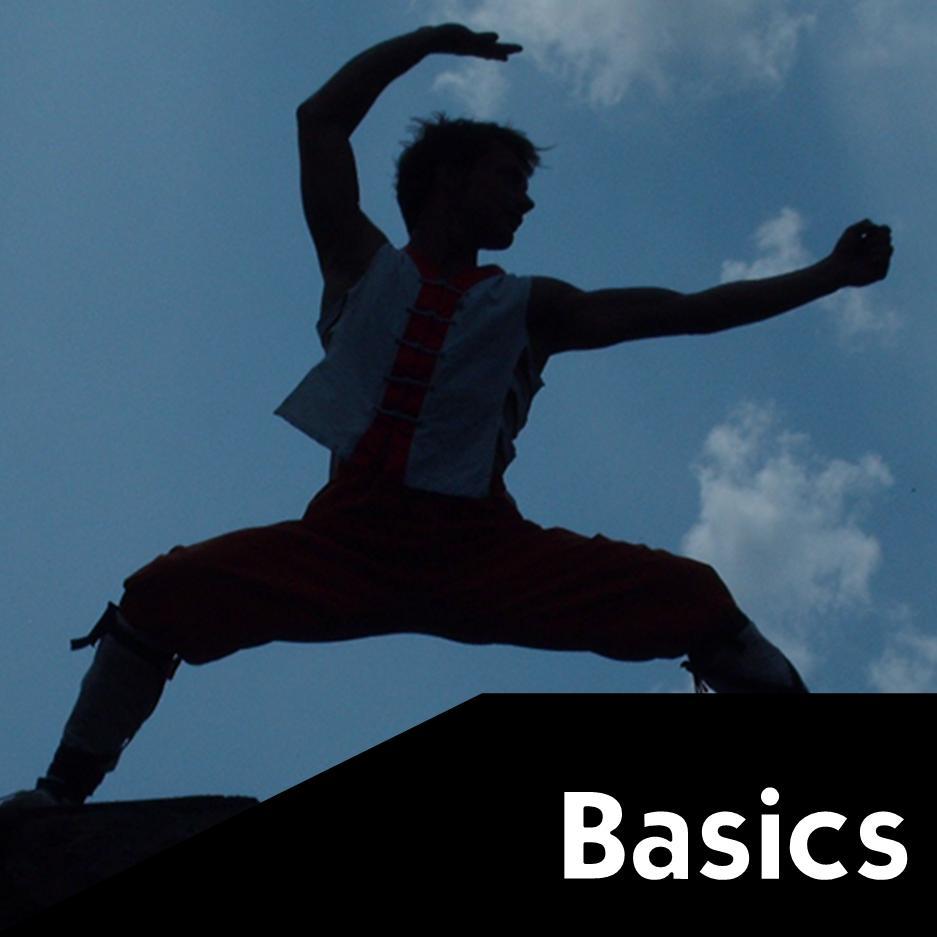 Maschera Publisher Basics 2