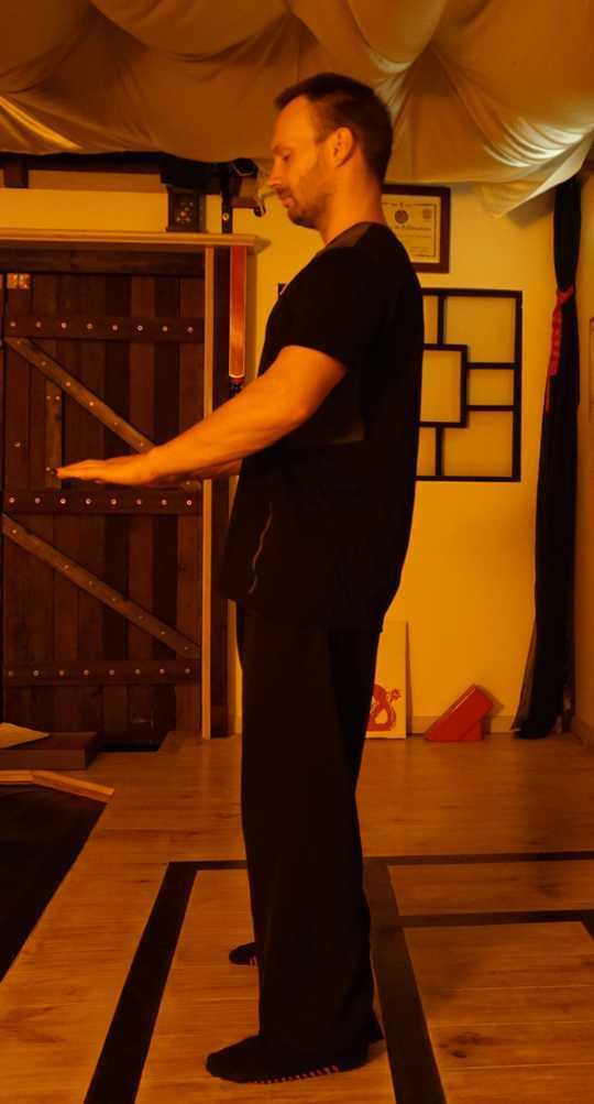 Zi Yan Gui Chao