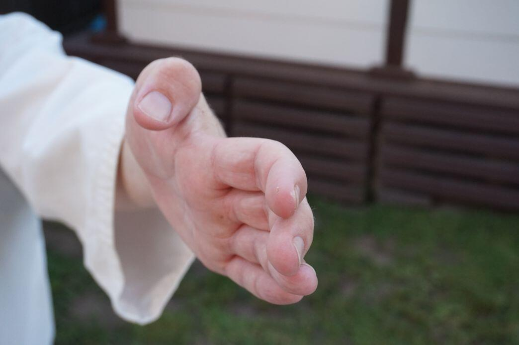 Haisho Back Hand - pictures of Karate fists types