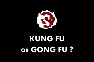 Kung fu or Gong fu