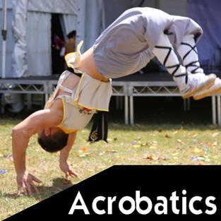 Acrobatics Martial Arts Explained piccolo 200x200px