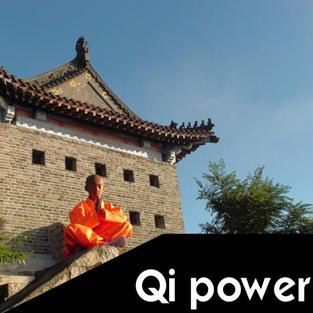 Qi Power Martial Arts Explained piccolo 200x200px