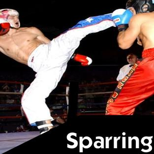 Sparring Martial Arts Explained piccolo 200x200px