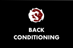 Back Conditioning