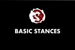 Basic Stances - Martial Arts Explained