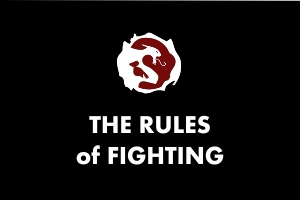 The Rules of Fighting