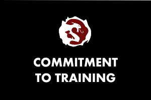 Commitment to Training - Martial Arts Explained