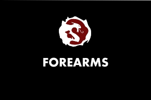 Forearms - Martial Arts Explained