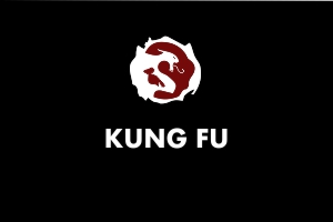 Kungfu  - Martial Arts Explained
