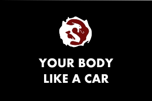 Martial Arts Explained - Body like a car