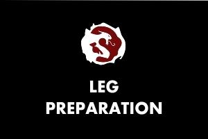 Martial Arts Explained - Leg workout