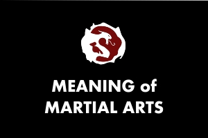 Martial Arts Explained - Meaning of Martial Arts