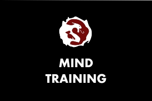 Martial Arts Explained - Mind training