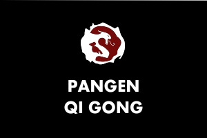 Martial Arts Explained - Pangen Qigong