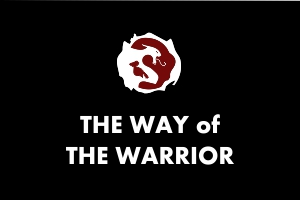 Martial Arts Explained - The Way of The Warrior