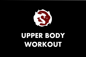 Martial Arts Explained - Upper Body Workout