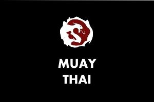 Muay Thai - Martial Arts Explained