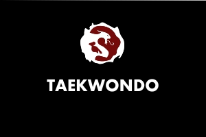 Taekwondo - Martial Arts Explained