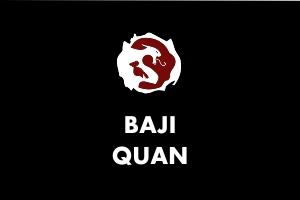 baji quan - Martial Arts Explained